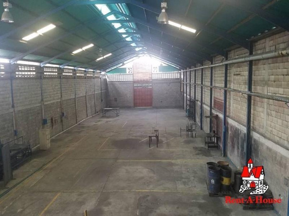 Galpón Industrial Alquiler Santa Rita, Maracay #19-4279