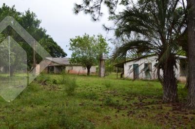 Sitio - Aguas Claras - Ref: 187322 - V-187322