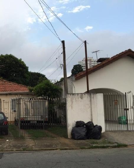 Terreno - 04-te - 32142162