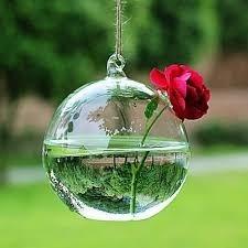 Vidro Para Planta Pendurado Em Casa Em Jardim