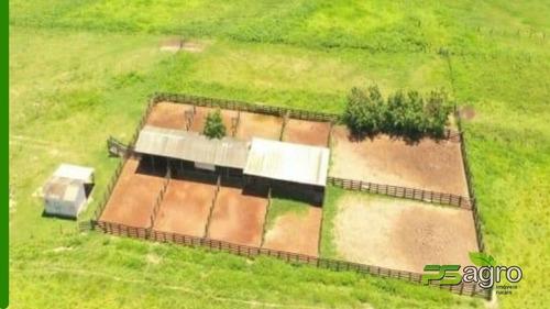 Imagem 1 de 19 de Fazenda À Venda, 108300000 M² Por R$ 180.000.000 - Centro - Canarana/mt - Fa0300
