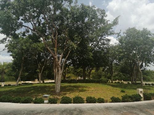 Terreno En Parque Natura, Norte De Mérida