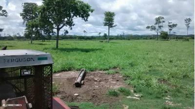 Área Rural Para Venda Em Miranda - Kj018