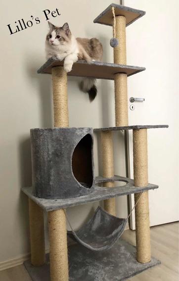 Arranhador De Gato Harem Gigante