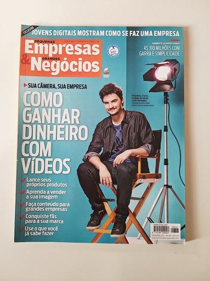 Revista Pequenas Empresas E Grandes Negócios Nº 313 Fev 2015