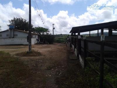 Fazenda Rural À Venda, Bairro Novo, Gravatá - Fa0005. - Fa0005