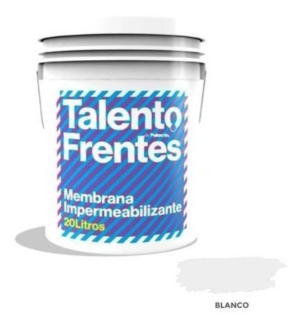 Pintura Membrana Frentes Y Muros Polacrin X 20 Lts Promocion