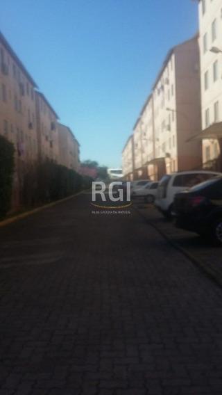 Apartamento Em Vila Nova - Li50878168