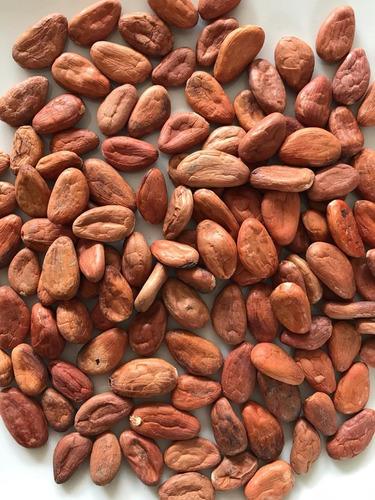 Imagen 1 de 1 de Cacao Lavado Rojo  De Tabasco 5 Kg