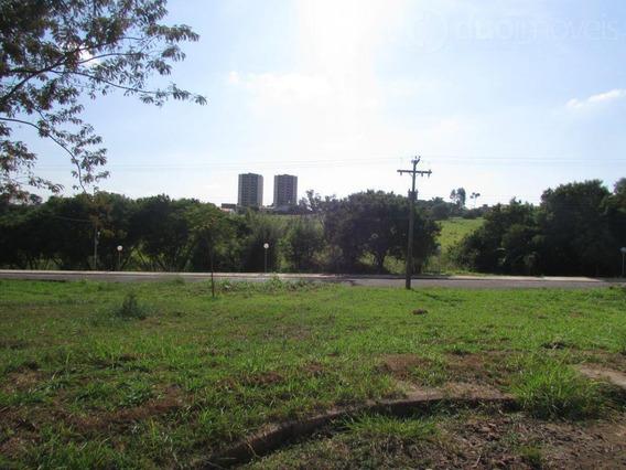 Terreno Residencial À Venda, Parque Santa Cecília, Piracicaba - Te0451. - Te0451