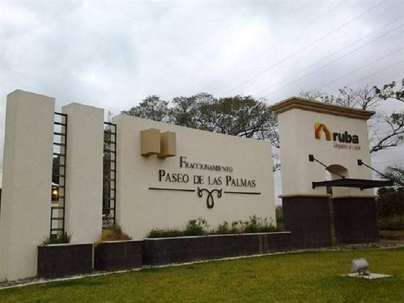 Departamento En Renta Palma De Fiji, Fraccionamiento Residencial Del Bosque