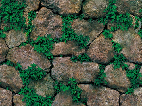Imagen 1 de 6 de Papel Tapiz Piedras Rocas Con Plantas Adhesivo Pared