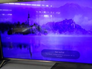 Tv Lg 49uj6560smart (reparacion Se Ve Azul/oscuro)(reparo)