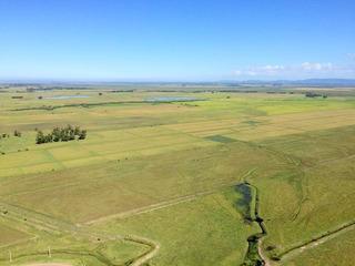 Fazenda Com 348 Hectares Em Santo Antônio Da Patrulha - Rs