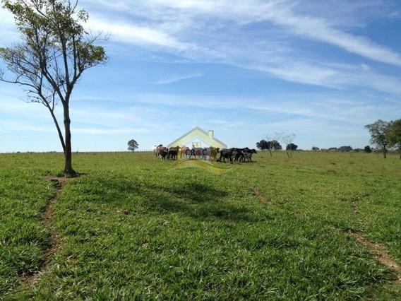 Fazenda Para Venda No Bairro Moquem, 0 Dorm, 0 Suíte, 0 Vagas, 13 Alqueires M - 826cr