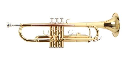Trompeta Tonalidad Bb Tudel Ml C/estuche Roy Benson Tr-101