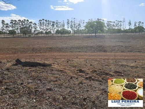 Fazenda À Venda Em Dueré/vale Do Araguaia -to - (dupla Aptidão) - 1537