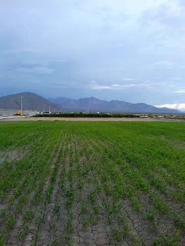Se Vende Rancho De 10 Mil Hectáreas A 60 Kilómetros De Torreón, Coahuila