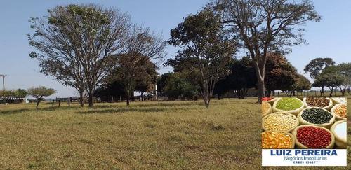 Fazenda À Venda Em Nova Alvorada Do Sul -ms -de 600 Hectares(dupla Aptidão) - 1647