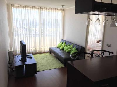 Marzo Diciembre Centro Viña 1 Dormitorio $315.000