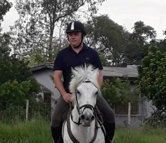 Hotelaria Cavalos Atletas, De Passeio, Aposentadoria, Baias