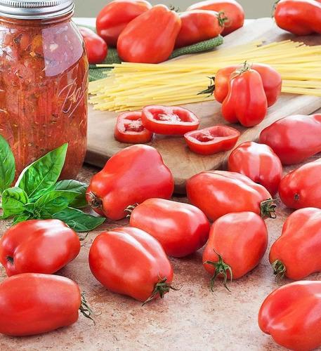 Marzano Tomate Sementes 100Seeds 50/% Mais Vitamin C Milagre Frutas /& Vegetais