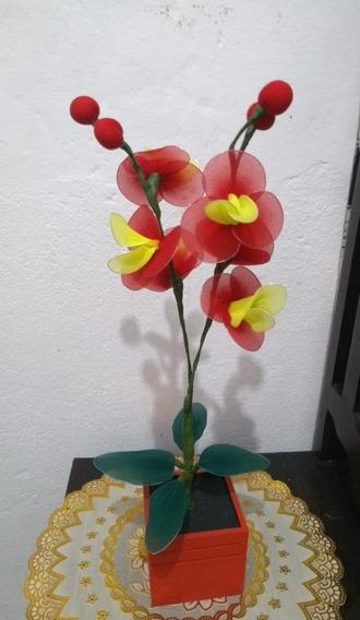 Orquídea Vaso Madeira Vermelho 2 Galhos Amarelo Vermelho