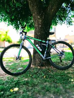 Bici Mtb Rodado 29 Sbk