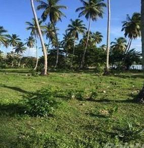 Terreno 400 Mil M2 Playa Magante Gaspar Hernandez Espaillat