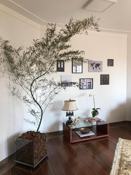 Apartamento De Condomínio Em São Paulo - Sp - Ap0820_prst
