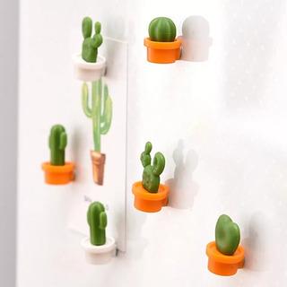 Imanes Cactus Suculentas Imán Decoración