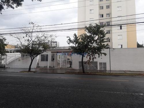 Apartamento À Venda Em Ponte Preta - Ap242057