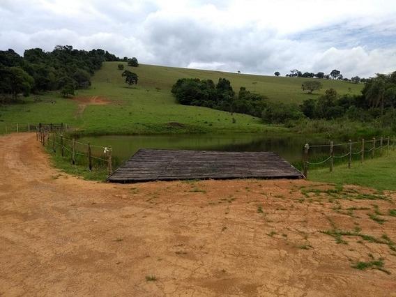 Terreno Para Venda, 0.0 M2, 15min Do Centro - Poço Fundo - 9202