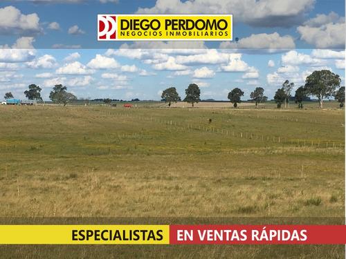 Campo En Venta, 416 Ha