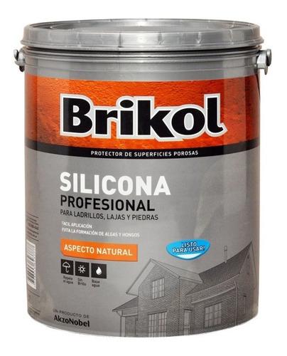 Brikol Ladrillos Silicona Base Agua Incoloro 4lts Pintumm