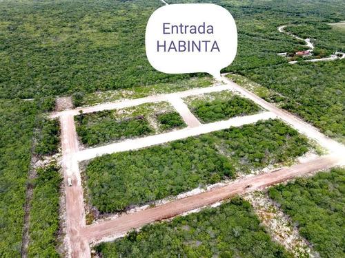 Imagen 1 de 20 de Lotes Residenciales De Inversión En  Habinta Cerca De Chicxu