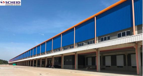 Galpão - Bonsucesso Logistics Park (blp) - Mr64851