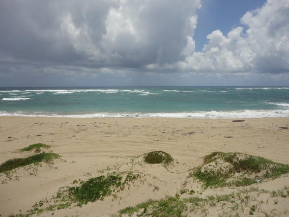 Solar En La Playa De Cabarete