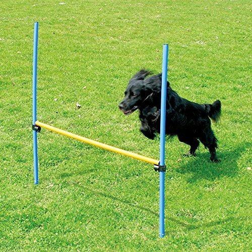 Mascotas Perros Juegos Al Aire Libre Agility Exercise Equipo