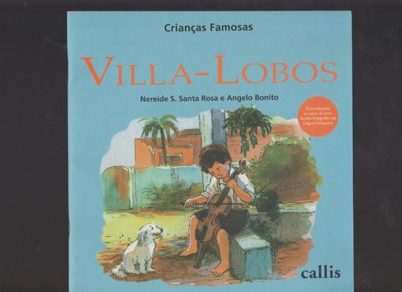 Livro Villa-lobos / 2010