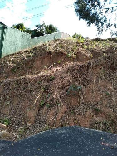 Imagem 1 de 2 de Terreno À Venda, Buracão, Vinhedo, Sp - Sp - Te0010_yamamo
