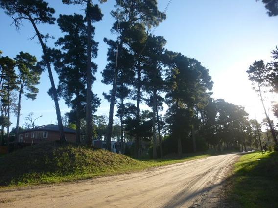 Venta Lote Barrio Álamos Pinamar Zona Norte