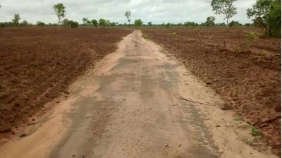 Fazenda Em Formoso Do Araguaia - To, Dupla Aptidão - 415
