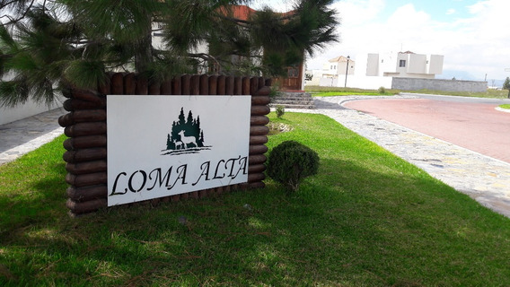 Terreno En Venta, Arteaga, Coahuila De Zaragoza