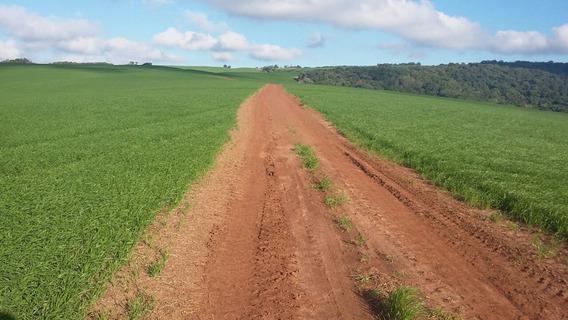 Vendo Fazenda Produtora De Soja ( 6023 )