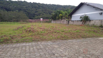 Terreno Residencial À Venda, Figueira, Gaspar. - Te0248