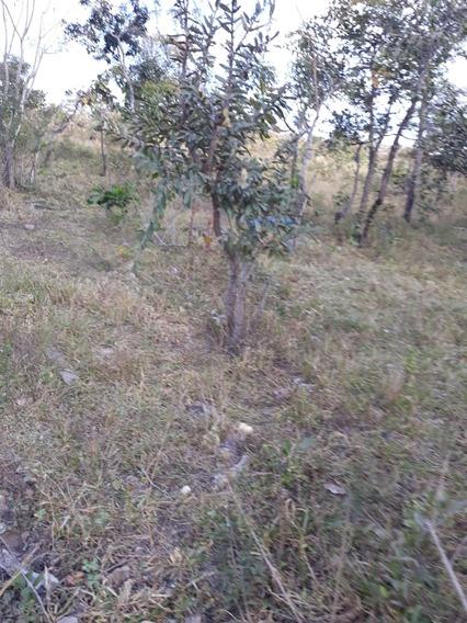 Chacara 1.038m² (ribeirao Dourados) Jardim Dos Ipes