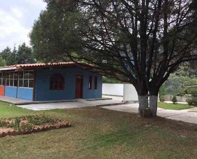 Departamento Amueblado En Renta, Col. Explanada Del Carmen