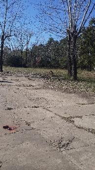 Imagen 1 de 5 de Tigre Benavidez Santa Marta Al 2300 Lote A La Venta