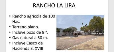 Terreno - Pueblo Lira